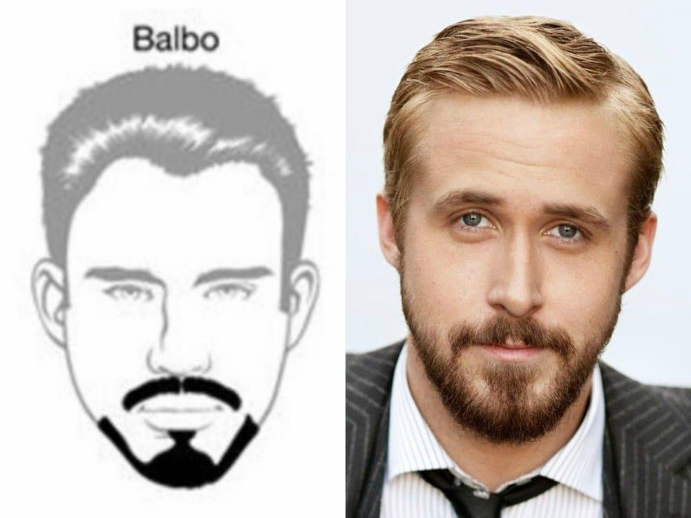 Barba balbo