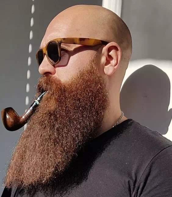 Barba Larga completa y larga bien cuidada hombre calvo