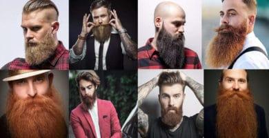 Mejores imagenes de barbas Largas para Hombres